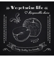 Vegetarian lifestyle background vector image