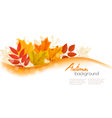 Autumn Nature Background With Colorful Leaves vector image vector image