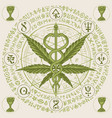 banner with cannabis leaf caduceus and runes vector image vector image