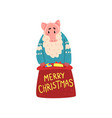 bearded pig character dressed in warm bright vector image vector image