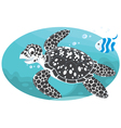 marine turtle and coral fish vector image