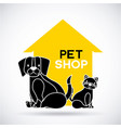 pet and veterinary vector image vector image