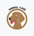 pet care logo vector image vector image