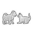 puppy and kitten line art sketch vector image vector image