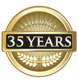 Thirty Five Years Experience Gold vector image vector image