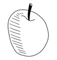 doodles apple hand drawing isolated vector image