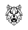 face wolf vector image vector image