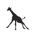 Giraffe silhouette vector image vector image