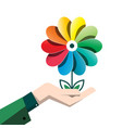Spring colorful flower in human hand isolated on