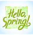spring hello vector image vector image
