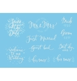 Wedding simple lettering decor vector image vector image