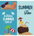 flyers hello summer card shine one and coconut vector image