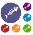fish bone icons set vector image vector image