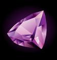 shiny violet amethyst vector image vector image