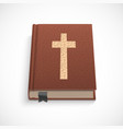 bible book vector image
