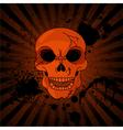 Evil Skull vector image vector image
