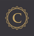 luxury crest decorative logo vector image vector image