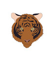 portrait of an orange tiger vector image