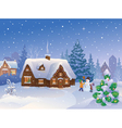 Winter suburb vector image