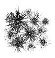 broken glass template vector image vector image