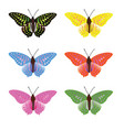 color full butterfly vector image vector image