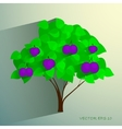 Decorative plum tree with ripe fruits vector image vector image