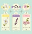 Herbal banner blue vector image vector image