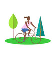 person sitting on bicycle trees decoration vector image vector image