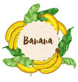round banner with bananas and leaves vector image vector image