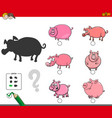 shadows activity game with pigs animals vector image vector image