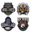 soccer and baseball teams vintage badges vector image