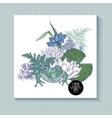 Vintage pond watery flowers greeting card vector image