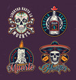 dia de los muertos colorful emblems vector image vector image