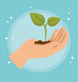 hand lifting plant ecology icon vector image
