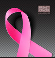 Pink breast cancer awareness ribbon vector image