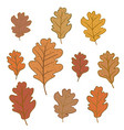 set of oak leaves isolated on white background vector image vector image