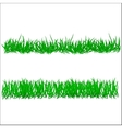 Flower and grass Borders set vector image