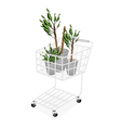 Yucca Trees or Dracaena Plants in A Shopping Cart vector image vector image