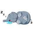 an elephant is sleeping soundly vector image vector image