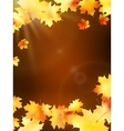Autumn leaves on colorful plus EPS10 vector image vector image