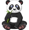 cartoon panda eating bamboo vector image