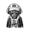 cat to headphones dressed in hoodie vintage vector image