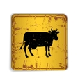 Old skratched yellow road sign with cow silhouette vector image