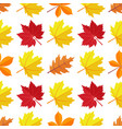 seamless pattern with various colorful vector image vector image