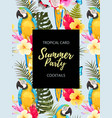 summer party invitation with macaw and flowers vector image