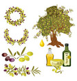 olive oil and berries green tree organic vector image