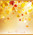 Autumn Sunny Background vector image vector image