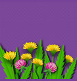 paper cut summer wildflowers dandelions and clover vector image