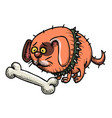 cartoon image of small fat dog vector image vector image