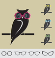 Owl and glasses vector image vector image